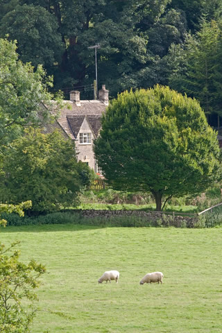 Cotswold Estate Agents Professional Help During The